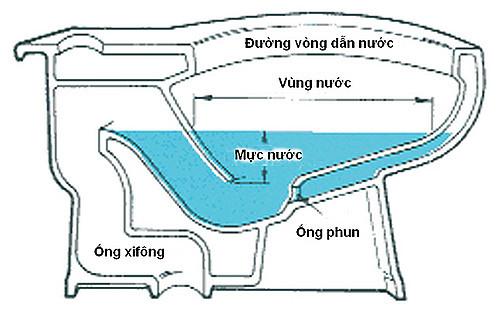 Cấu tạo và nguyên lý hoạt động của bồn cầu